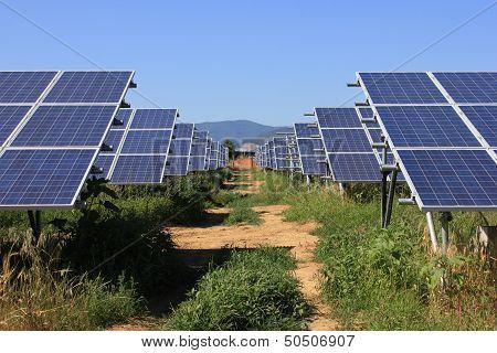 Solar Cells a green field