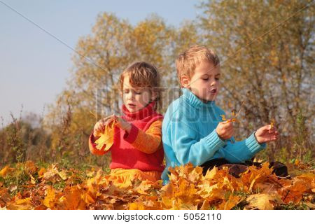 Two Children Sit On Fallen Maple Leaves