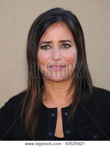 LOS ANGELES - AUG 04:  Pamela Adlon arrives to CBS Showtime CW All Star Winter TCA Party 2013  on July 29, 2013 in Beverly Hills, CA