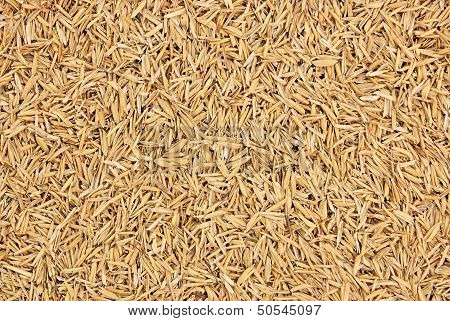 Rice husks
