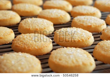 Freshly baked sugar cookies on cooling rack.  Closeup with extremely shallow dof.