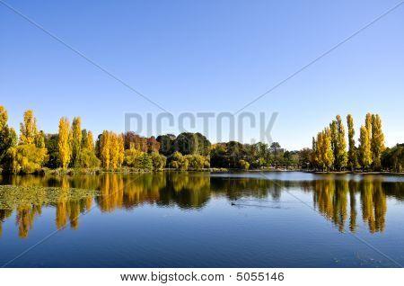Autumncommparklake