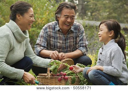 Grandparents and granddaughter in garden