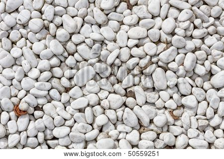 White Pebbles In Plan View