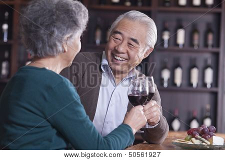 Senior Couple Toasting and Enjoying Themselves Drinking Wine, Focus on Male