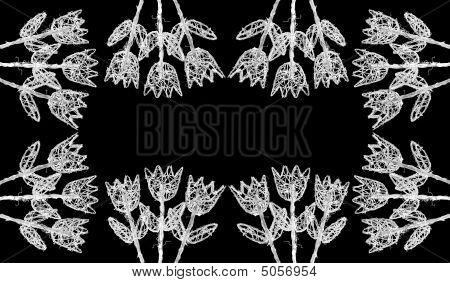 White Flowers Of Wood Frame