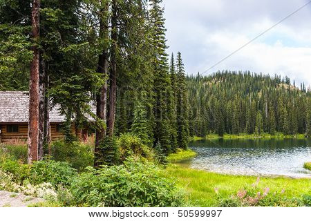 Log Cabin In Pine Forest By Lake