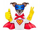 foto of incredible  - super hero dog with red cape and a blue mask und thumb up - JPG