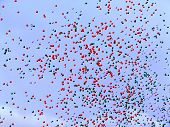 Many Balloons Flying In The Sky poster