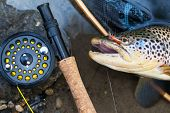 picture of fly rod  - A fly fisherman - JPG