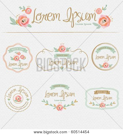 Flowers design elements.Frames, labels, ribbons, symbols. Brand & identity elements.