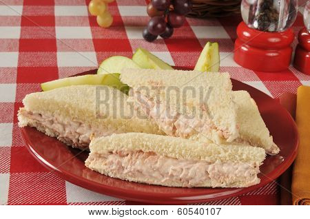Tuna Sandwich With Sliced Apple