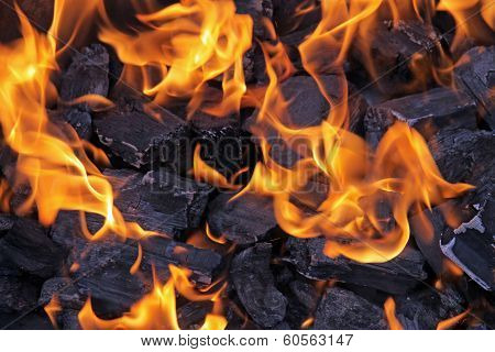 Barbecue Fire