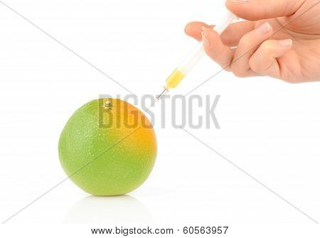 Genetic Modification Of A Fruit