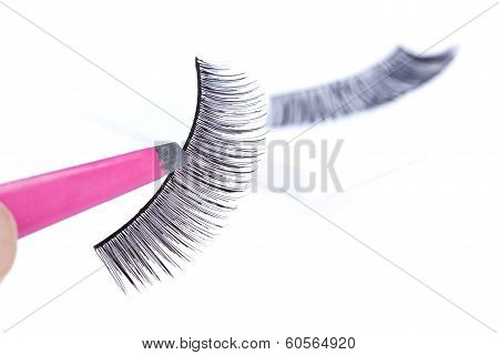 False Lashes And Pink Pincers, Closeup