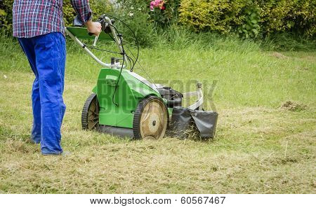 Young man mowing the lawn with a lawnmower