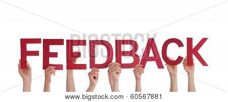 People Holding Feedback