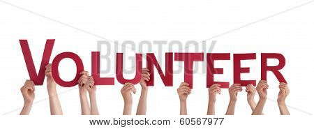 People Holding Volunteer