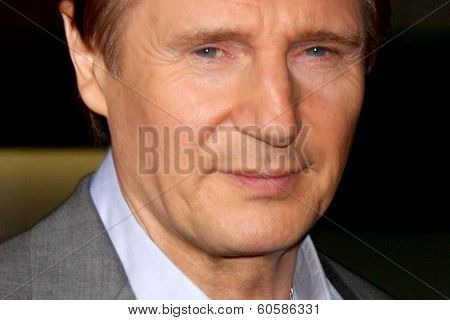 LOS ANGELES - FEB 24:  Liam Neeson at the