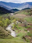 pic of armenia  - Dilijan National Park in Armenia in early spring - JPG