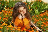 stock photo of marigold  - Enjoyment - JPG