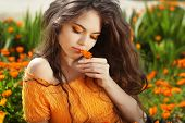 foto of marigold  - Beautiful Teenage Model girl smelling flower over marigold flowers field - JPG