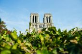 Notre Dame de Paris cathedral in summer day