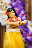 foto of bobble head  - Tropical setting for a Hula girl doll - JPG