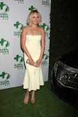 LOS ANGELES - FEB 26:  Malin Akerman at the Global Green USA Pre-Oscar Event at Avalon Hollywood on