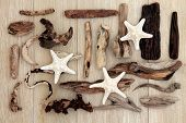 foto of driftwood  - Starfish and driftwood abstract design over old oak background - JPG