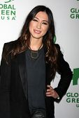 LOS ANGELES - FEB 26:  Michelle Branch at the Global Green USA Pre-Oscar Event at Avalon Hollywood o
