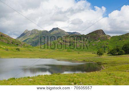 Blea Tarn Lake District Cumbria England UK between Great Langdale and Little Langdale