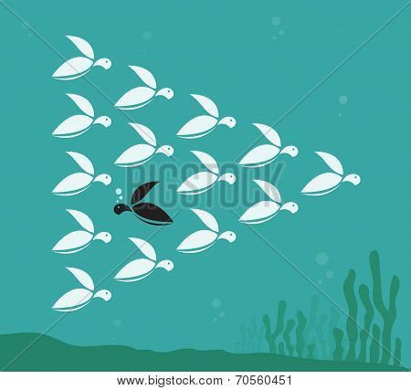 Vector image of a herd of turtles swimming in the sea.