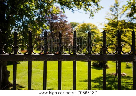 Old Black Iron Fence Around Garden
