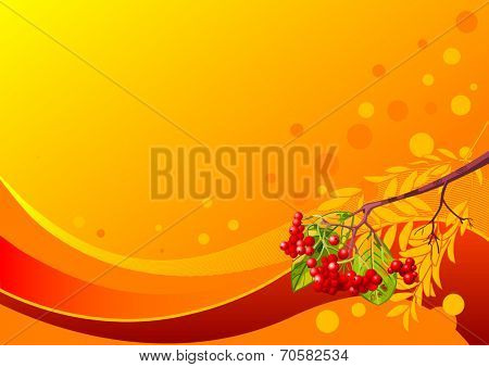 llustration of decorative autumn design with rowanberry