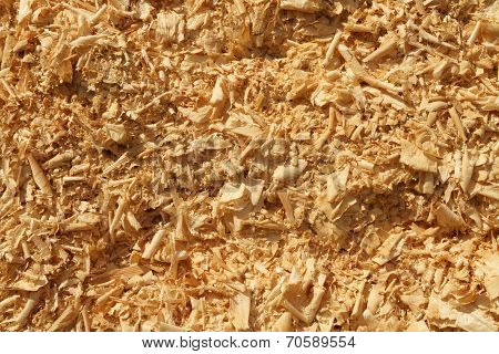 Wood Shavings And Sawdust Pile Background Texture