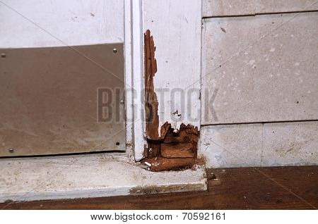 Rotting Door Frame