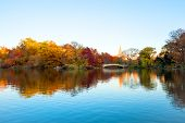 foto of covered bridge  - The Lake And Bow Bridge In Central Park On Clear Autumn Day - JPG
