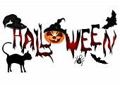 stock photo of spiderwebs  - Halloween banner  - JPG