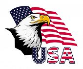 stock photo of bald head  - Stylized illustration of bald eagle with USA lettering against American flag background - JPG