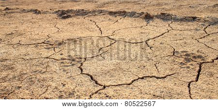 Cracked Waterless Ground. Natural Disasters