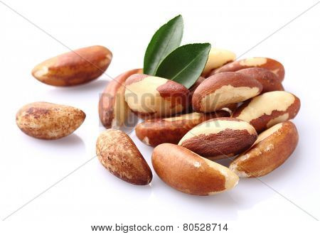 Bertholletia.Brazil nuts.