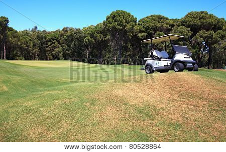 Buggy on the field for golf.