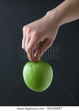 Apple Hanging