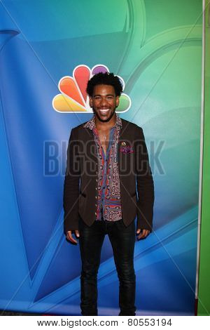 LOS ANGELES - DEC 16:  Brandon Smith at the NBCUniversal TCA Press Tour at the Huntington Langham Hotel on December 16, 2015 in Pasadena, CA