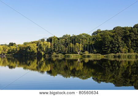 Peaceful Lake In The Summer