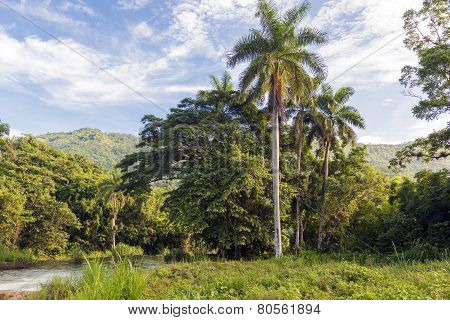 The Beautiful Cuban Countryside