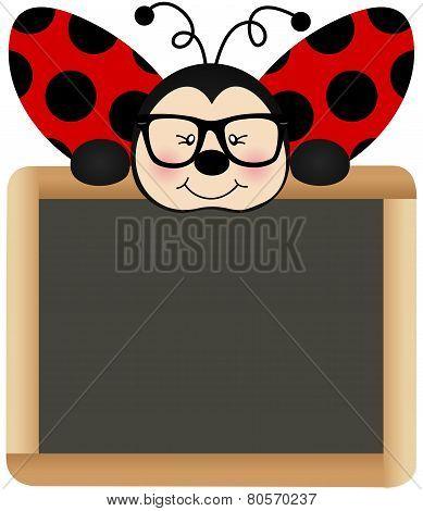 Ladybird Teacher with School Board