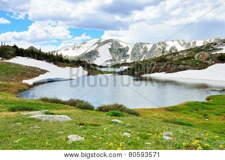 Alpine Meadow With Wild Flowers And Lake In Snowy Range Mountains, Medicine Bow, Wyoming