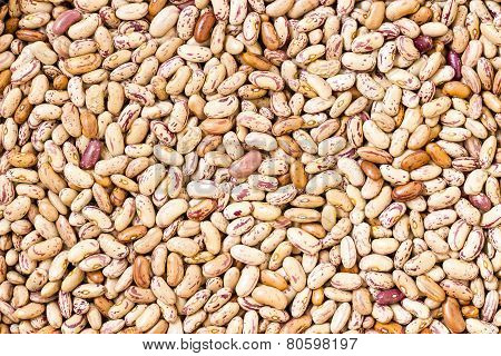 Macro photograph of White Kidney / pinto beans background